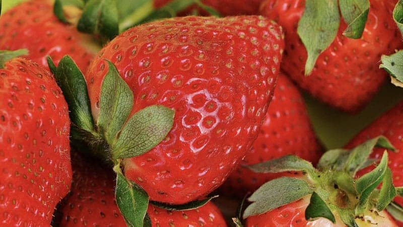 You are currently viewing Healthier Strawberries With Oxygen