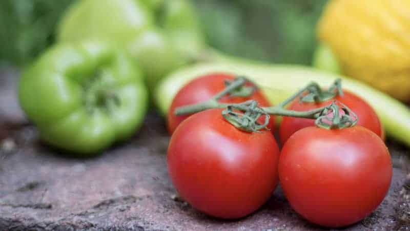 O2Grow Dissolved Oxygen Tomato and Pepper Test Results
