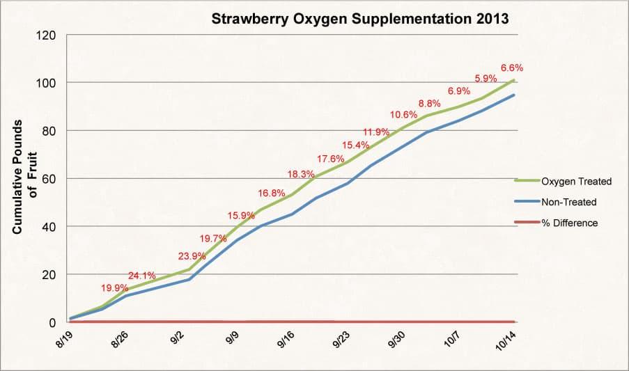 Oxygen Treated Fruit
