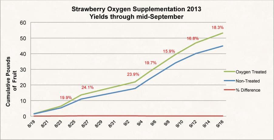 Strawberry Oxygen Supplementation Test O2Grow