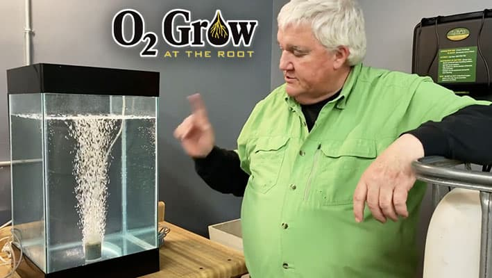 View the new series of O2 Grow videos